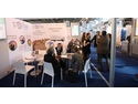 Selte Spa Booth - gsmExchange tradeZone