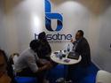 Basatne International LLC - Ammar Aboulnasr